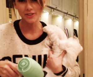 Taylor Swift, icon, and cat image