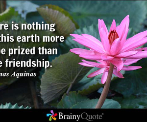 friendship, precious, and quote image