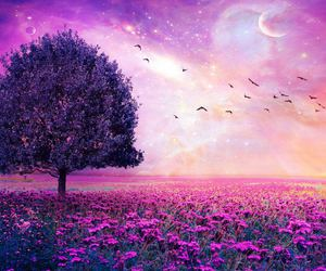 beautiful and purple image