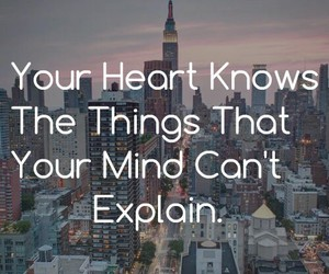 heart, quotes, and mind image