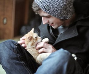 boy, cat, and photography image