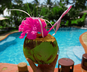 pool, summer, and coconut image