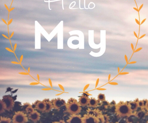 hello, may, and new day image