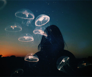 jellyfish and ocean image