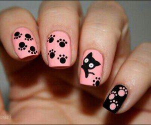 cats, nails, and paw image