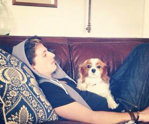 dog and charlie puth image