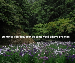 Image by B.Rodrigues