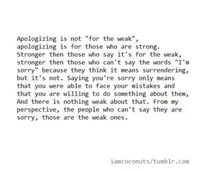 quote, apologize, and sorry image
