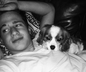 dog, smile, and charlie puth image