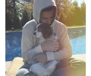 dog, love, and charlie puth image
