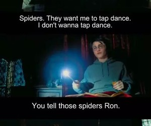 harry potter, funny, and spiders image