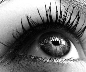 black and white, eye, and eye lashes image