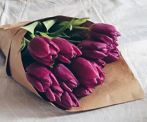 flowers, tulips, and purple image