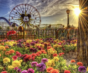 disney, flowers, and spring image