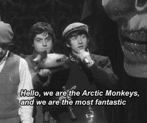 arctic monkeys, alex turner, and fantastic image