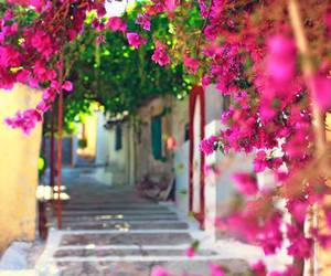 summer and Greece image