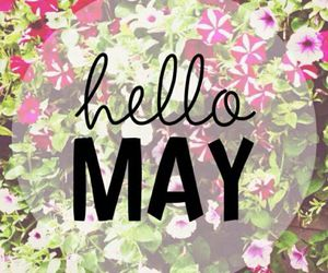 may, flowers, and beautiful image