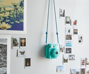 photo, camera, and polaroid image
