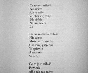 poem, poetry, and polish image