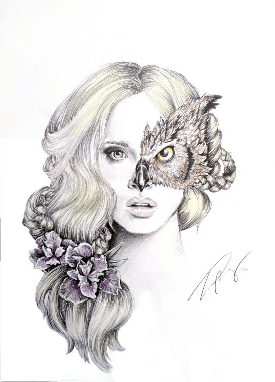 girl, art, and owl image