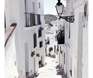 white, street, and summer image