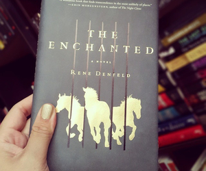 black, book, and horse image