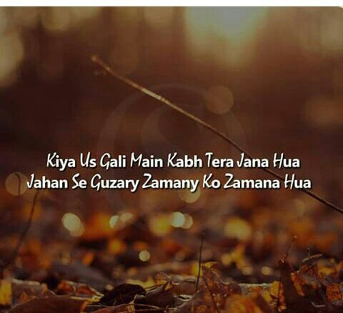 Image In Urdu Quotes Text Sayings Thoughts Collection By S Mi