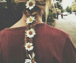 blondie, flower, and daisy image