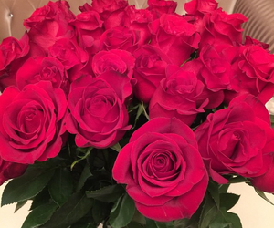 roses, flowers, and red image