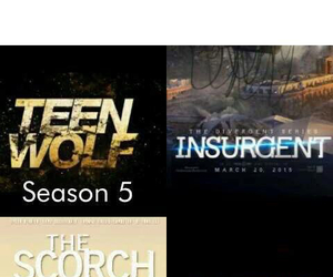 insurgent, teen wolf, and divergent image