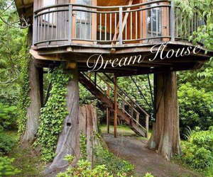 house and treehouse image