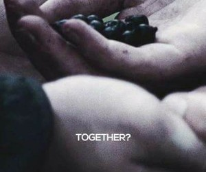 the hunger games, josh hutcherson, and katniss image