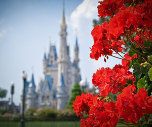 disney, castle, and disney world image