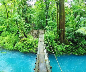 travel, tropical, and adventure image