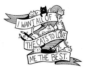cat, love, and drawing image
