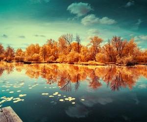 lake, pink, and tree image
