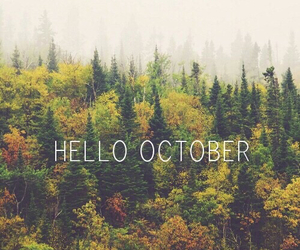 fall, green, and hello image