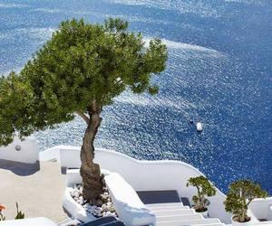 Greece, sea, and tree image
