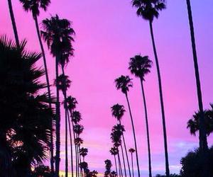 california