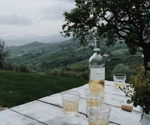green, location, and wine image