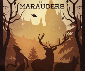 harry potter, marauders, and hogwarts image