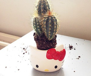 cactus and hello kitty image