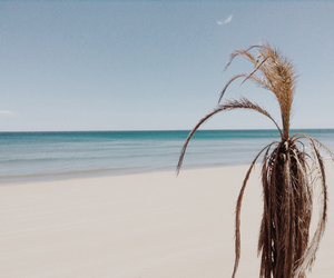 alone, beach, and spain image