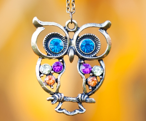jewelery, owl, and necklace image