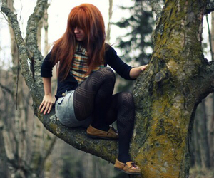 fall, ginger, and ideas image