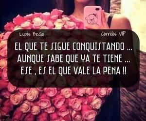 amor, rosas, and conquistar image