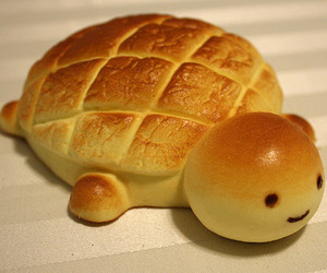 cute, turtle, and bread image