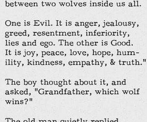 good and bad, wolf, and the one you feed image
