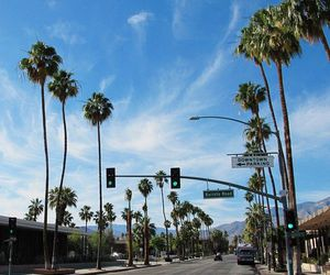california, Dream, and palm springs image