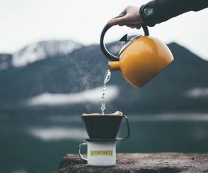nature and tea image